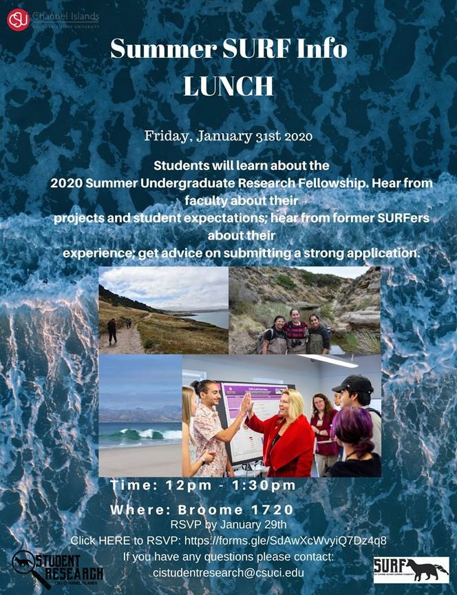 SURF Information Lunch