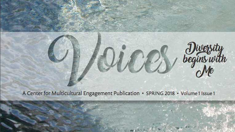 Current Voices issue