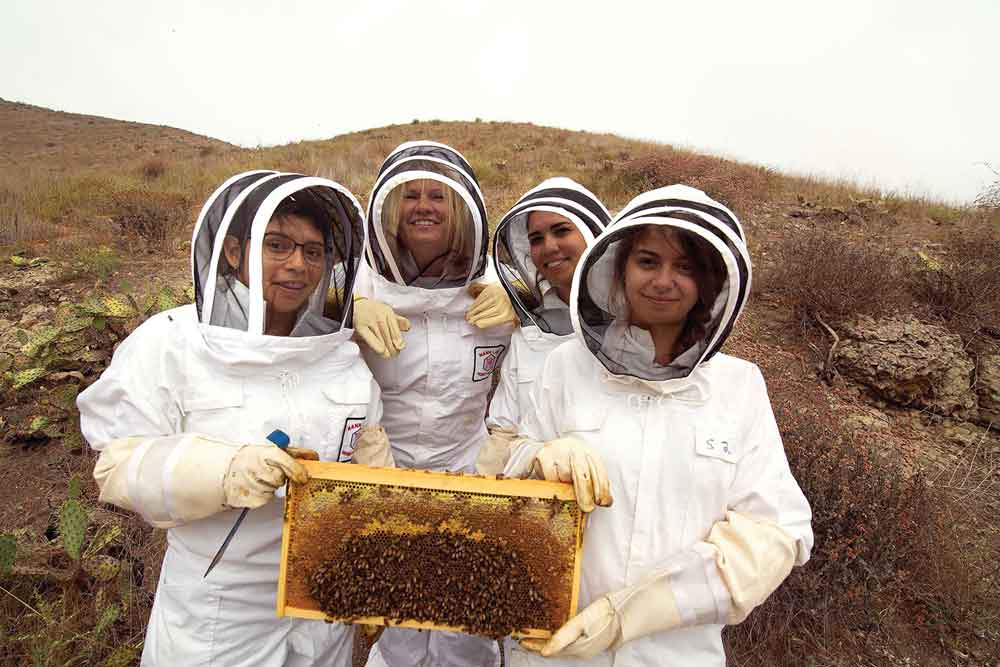 Michelle Mendoza, President Erika Beck, Shirley Williams, and Jazmin Horvet are outfitted with protective suits for handling bee hives.
