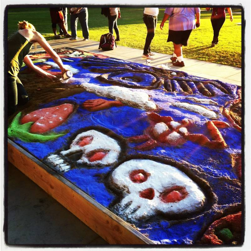 Highlights wavelength csu channel islands for Day of the dead mural