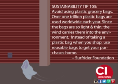 Tip avoid using plastic grocery bags, use reusable bags instead