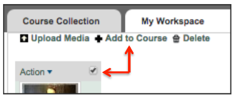 Checkbox and Add to Course link within ShareStream